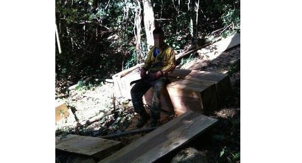 Gia Lai: Tung ảnh phá rừng lên Zalo để làm kỷ niệm