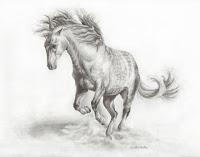 horse drawings, andalusian horse, horse art