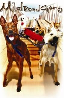 Những Chú Chó Bất Hạnh