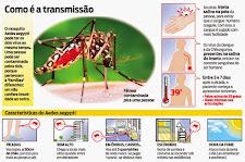 Chikungunya ou Dengue tanto faz, o combate continua contra o Aedes Aegypti