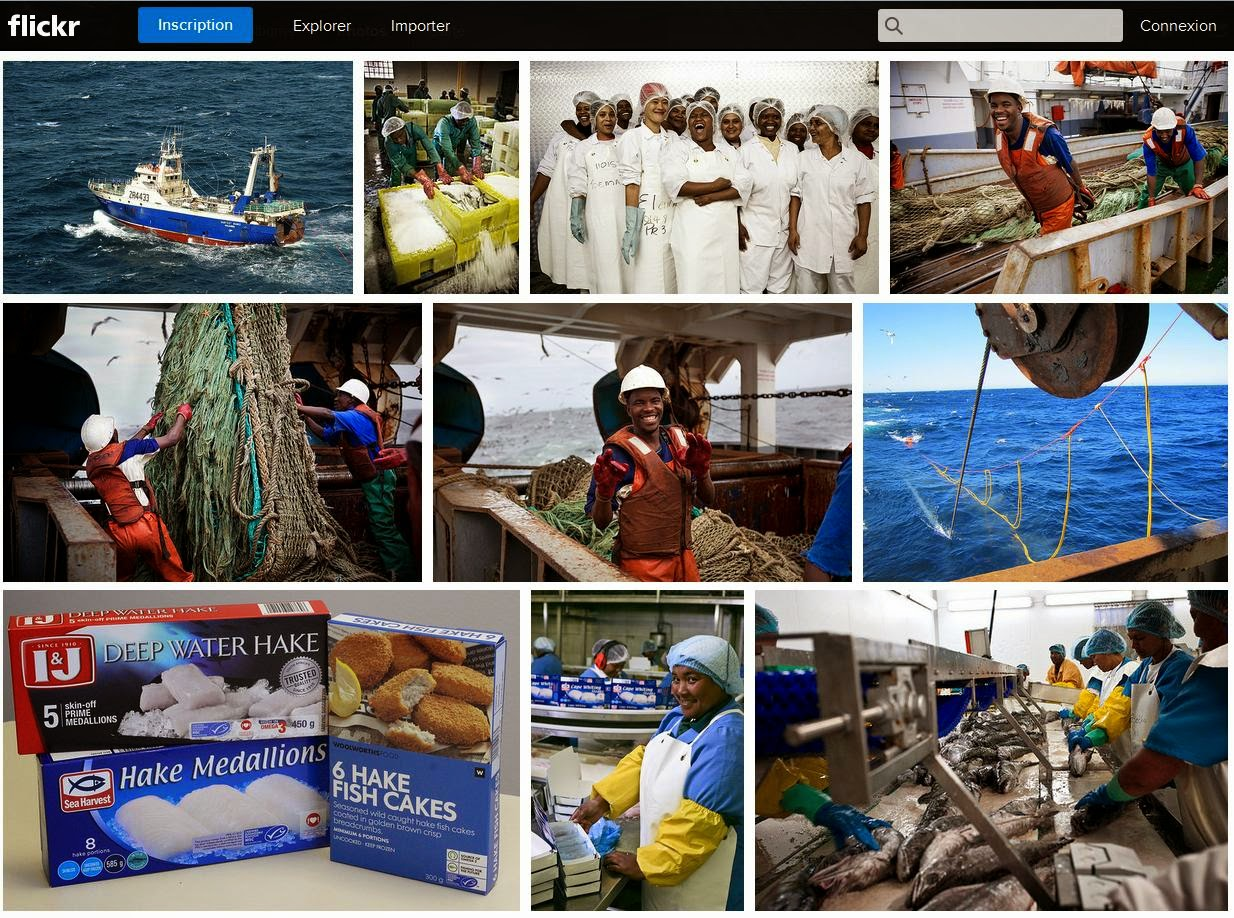 https://www.flickr.com/photos/sustainableseafood/sets/72157646958755698/
