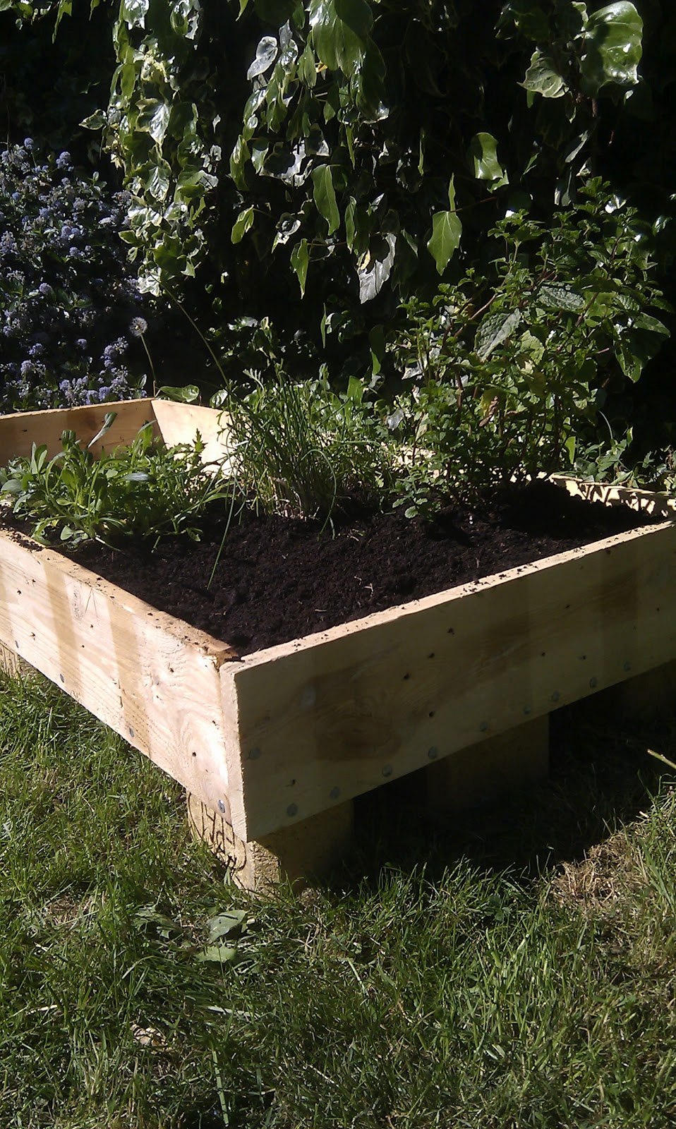 Things what i made with pallets i made a raised flower bed for Flower beds out of pallets