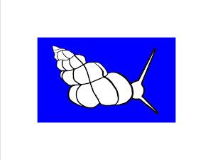 La FCCPMF dona suport a l'Slow Sailing - Navegació tranquil·la