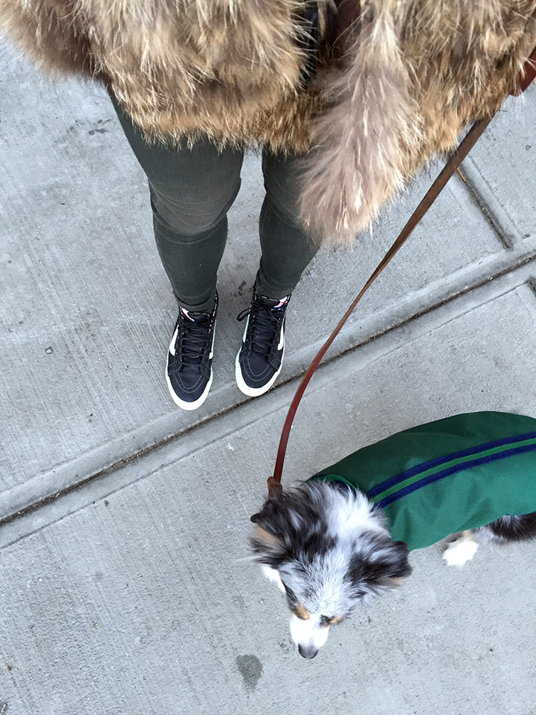 From where i stand, leather Vans sneakers, J Brand jeans, Adrienne Landau fur, Wallyface, mini Aussie