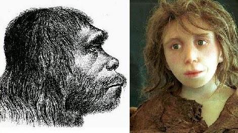 Neanderthal History Rewritten — Again