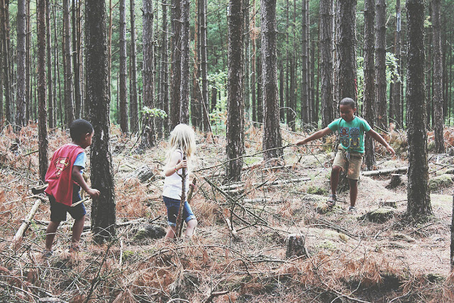 forest-story-summer-playground-kids-summer-todaymyway