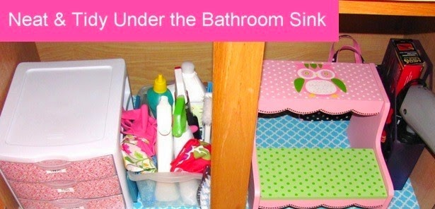 Neat and Tidy Under the Bathroom Sink