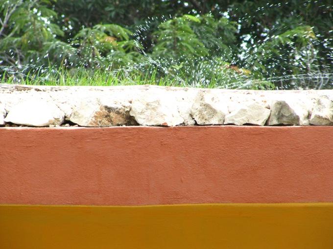 riego por aspersión - jardínes en la azotea Tulum Quintana Roo