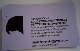 Visita il mio sito web Cinzia Benevelli Bravi Pappagalli cliccando sull'immagine