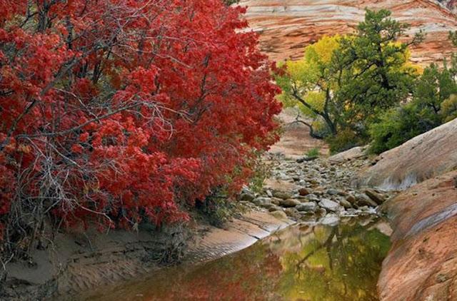 autumn in USA