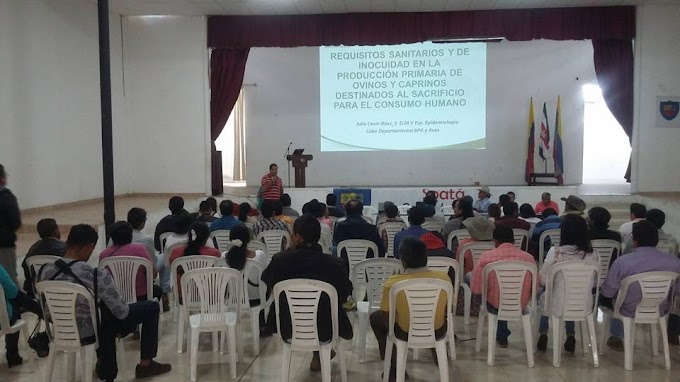 Autoridades sanitarias socializan proyecto piloto de excelencia sanitaria en ovinos y caprinos de Boyacá y Santander