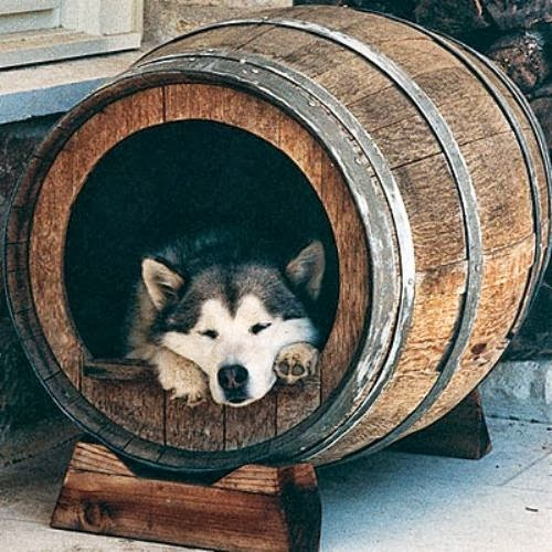 Barrel Pet House