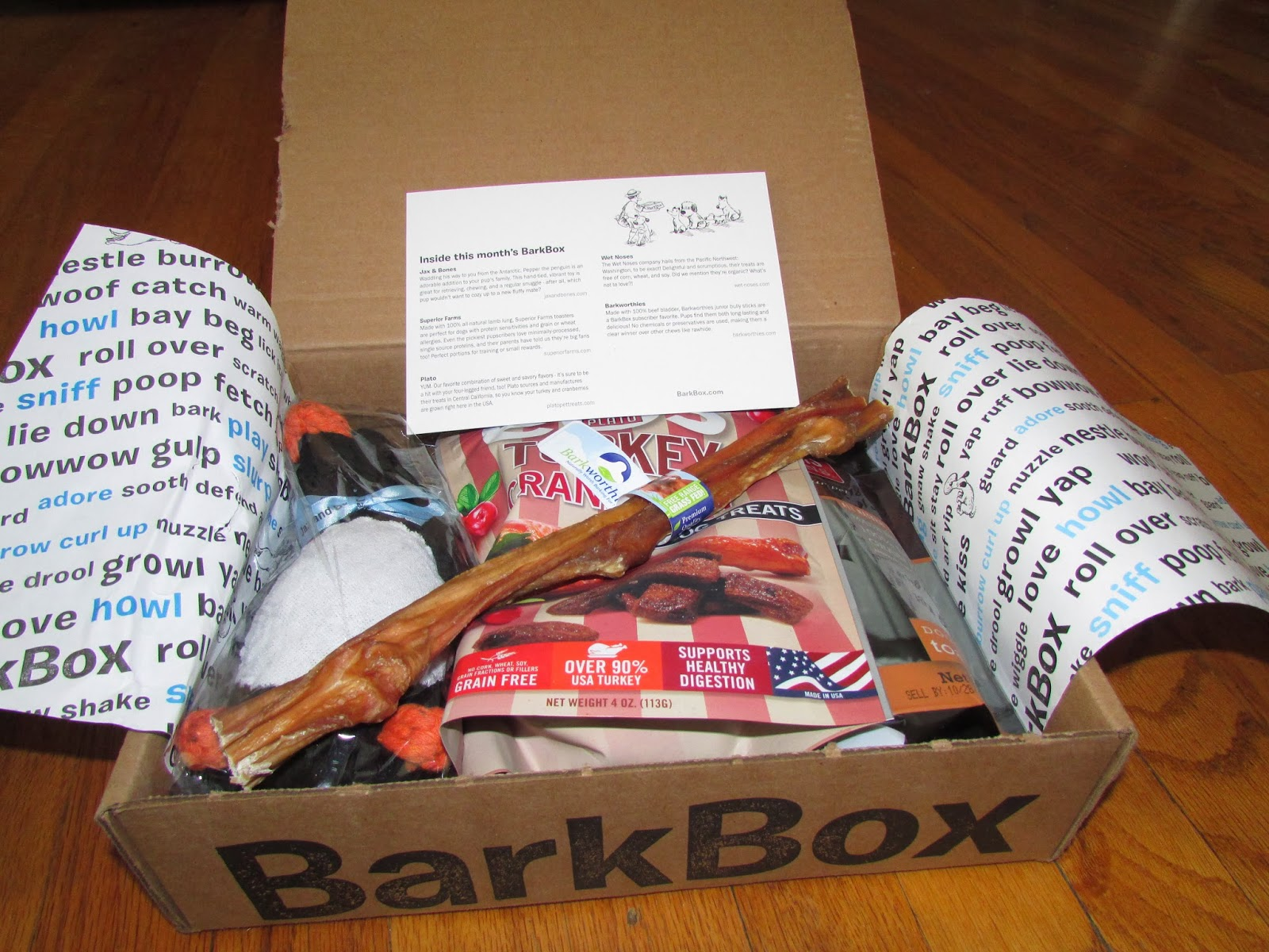 My Rotten Dogs December 2013 Barkbox Review And 10 Off