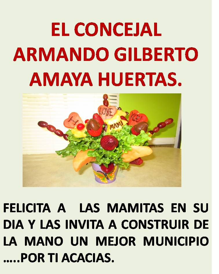 ARMANDO AMAYA