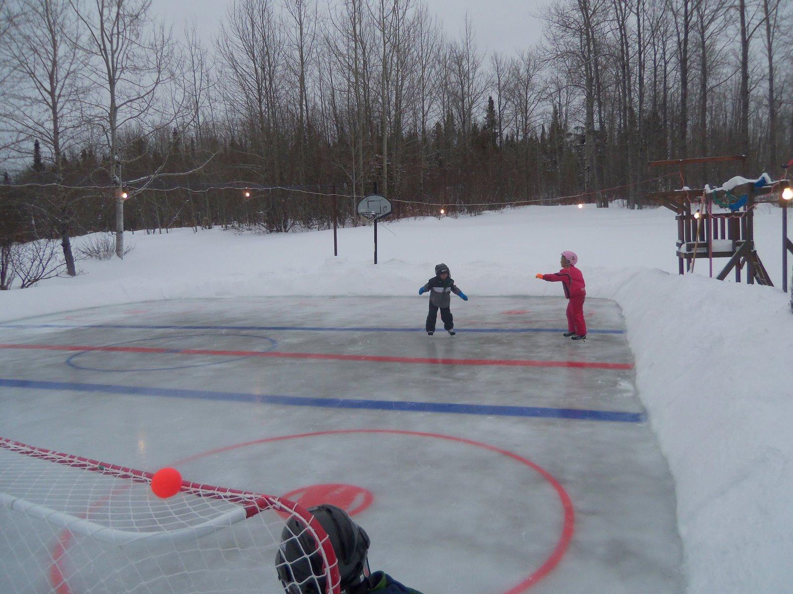 backyard ice rink tree changed