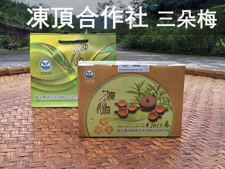 2015 凍頂合作社比賽茶 三朵梅