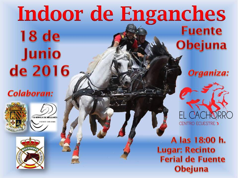 Indoor de Enganches