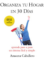 Libro: Organiza tu hogar en 30 das