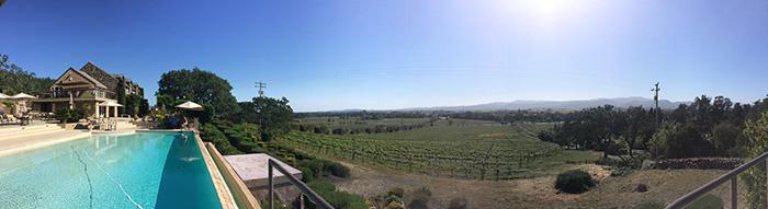 winery napa