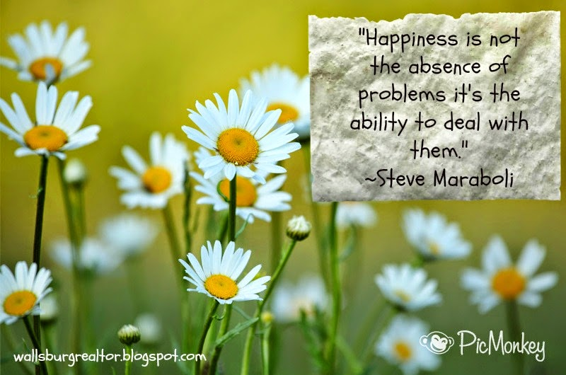 Happiness is not the absence of problems it's the ability to deal with them