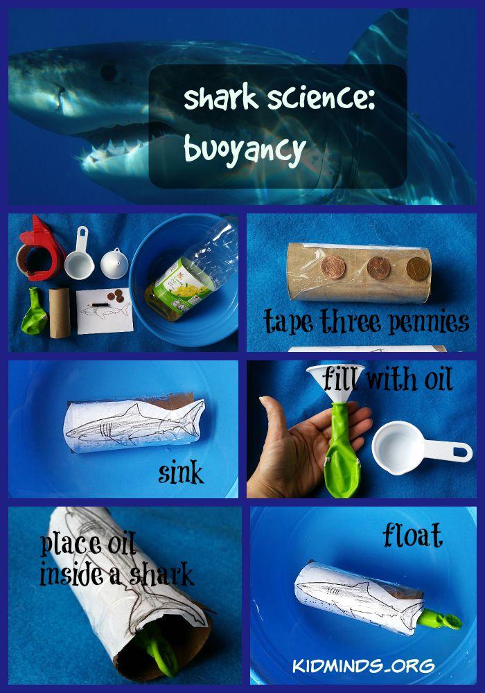 Shark Science Buoyancy KidMinds