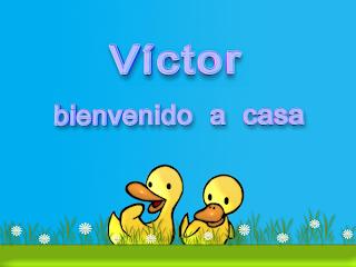 Victor, bienvenido a casa