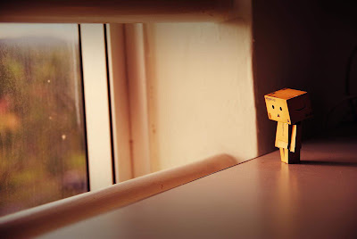 a lonely danbo widescreen wallpaper