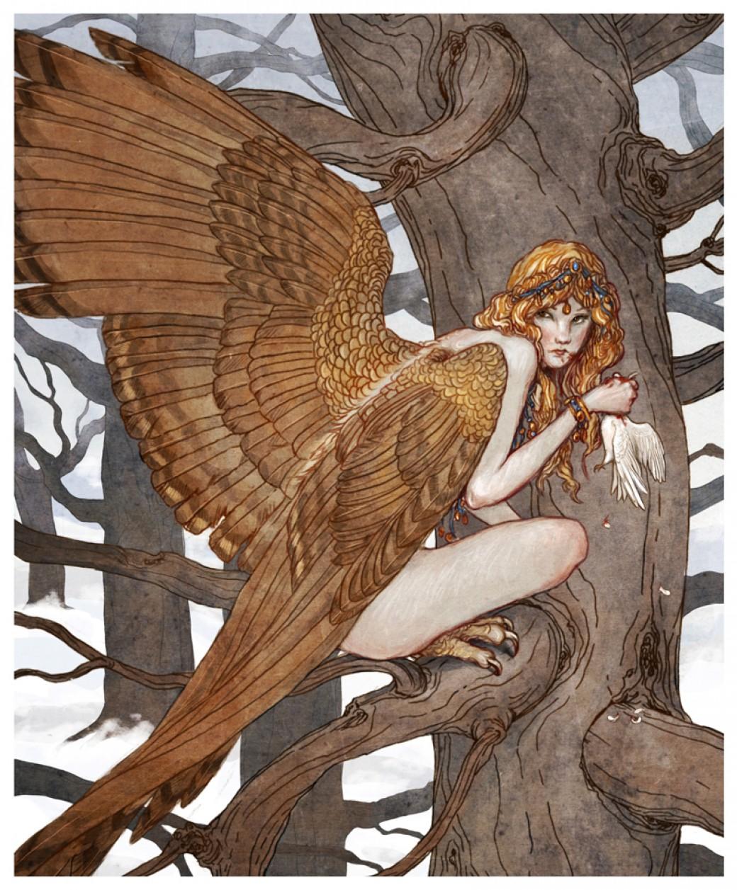 Harpy por bluefooted