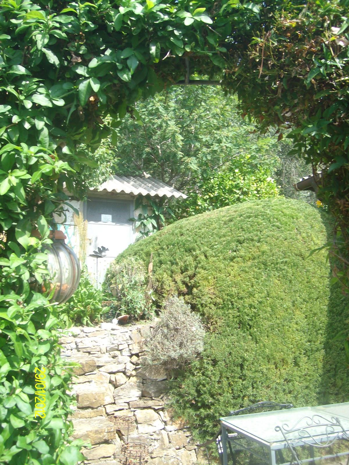 Bruno splendido giardiniere - Giardini curati ...