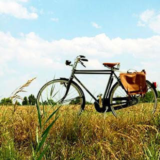 bicicleta and bikes, blog, reparación de bicicletas