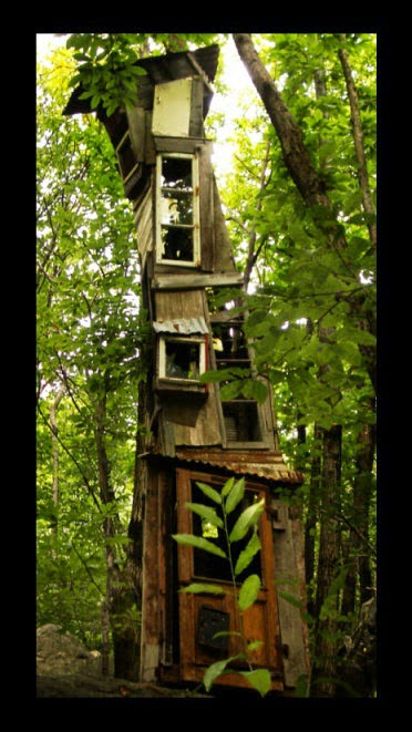 Nice Tree House