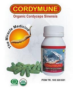 Natural Cordymune Suplemen Kesehatan Alami