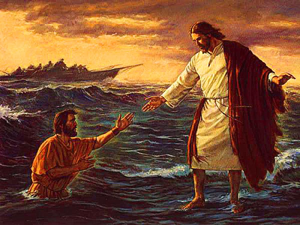 Renovación de la fe
