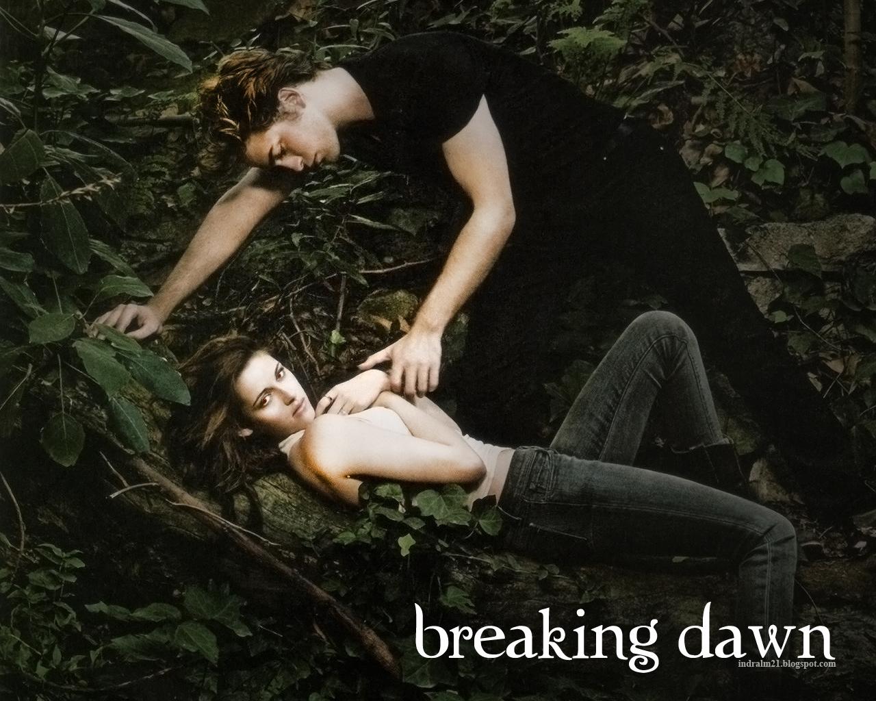 http://2.bp.blogspot.com/-GP1S4DKhW20/TyqOucbBjpI/AAAAAAAAAEI/redNQll4lTI/s1600/Breaking-Dawn-twilight1.jpg