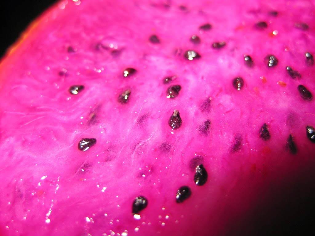 It's called Pitaya or Dragon Fruit if you're curious