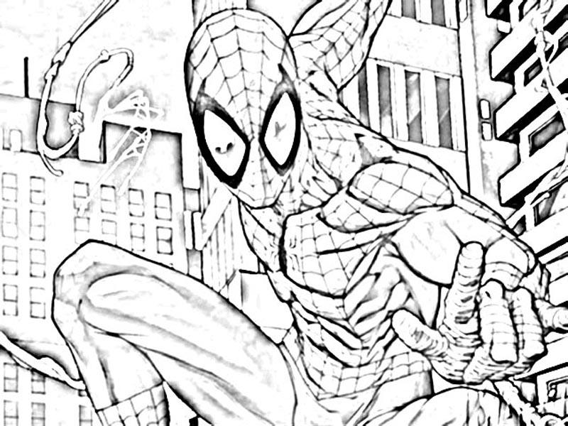 mewarnai spiderman