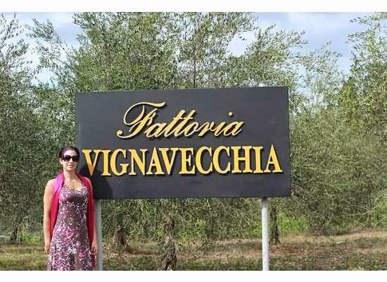 wine tasting at Vignavecchia winery in Radda Tuscany