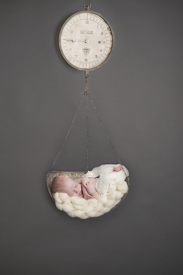 eugene, or newborn photography hanging scale