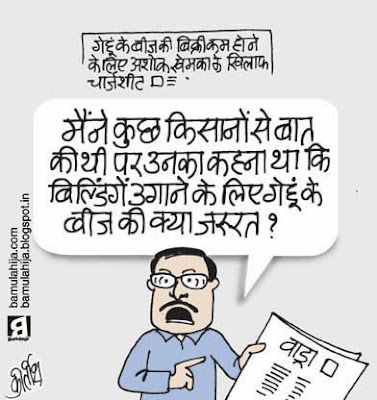 robert vadra cartoon, congress cartoon, ashok khemka cartoon, corruption cartoon, corruption in india, indian political cartoon