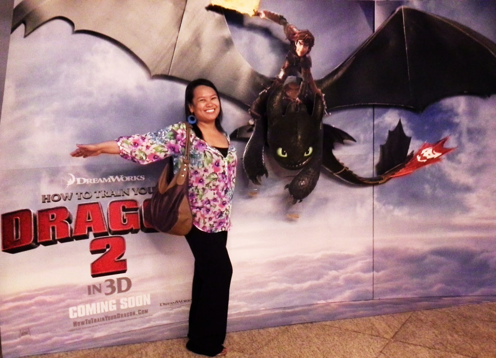 how to train your dragon 2014