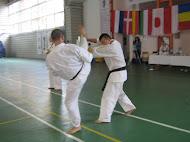 Karate Kyokushinkai Sibiu
