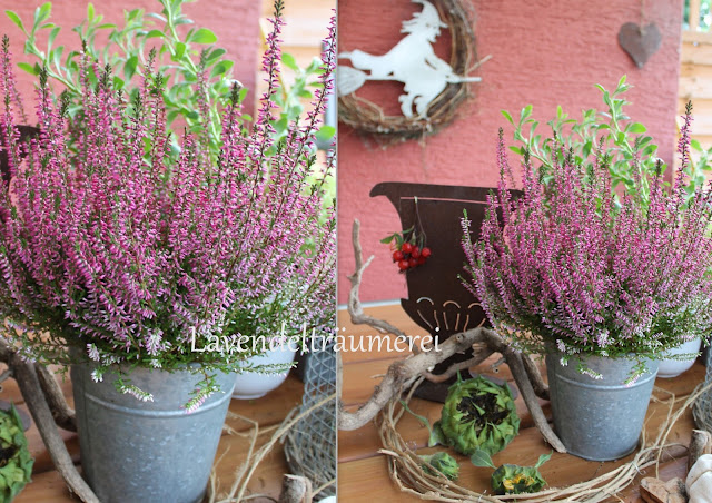 Lavendelträumerei Herbstzeit