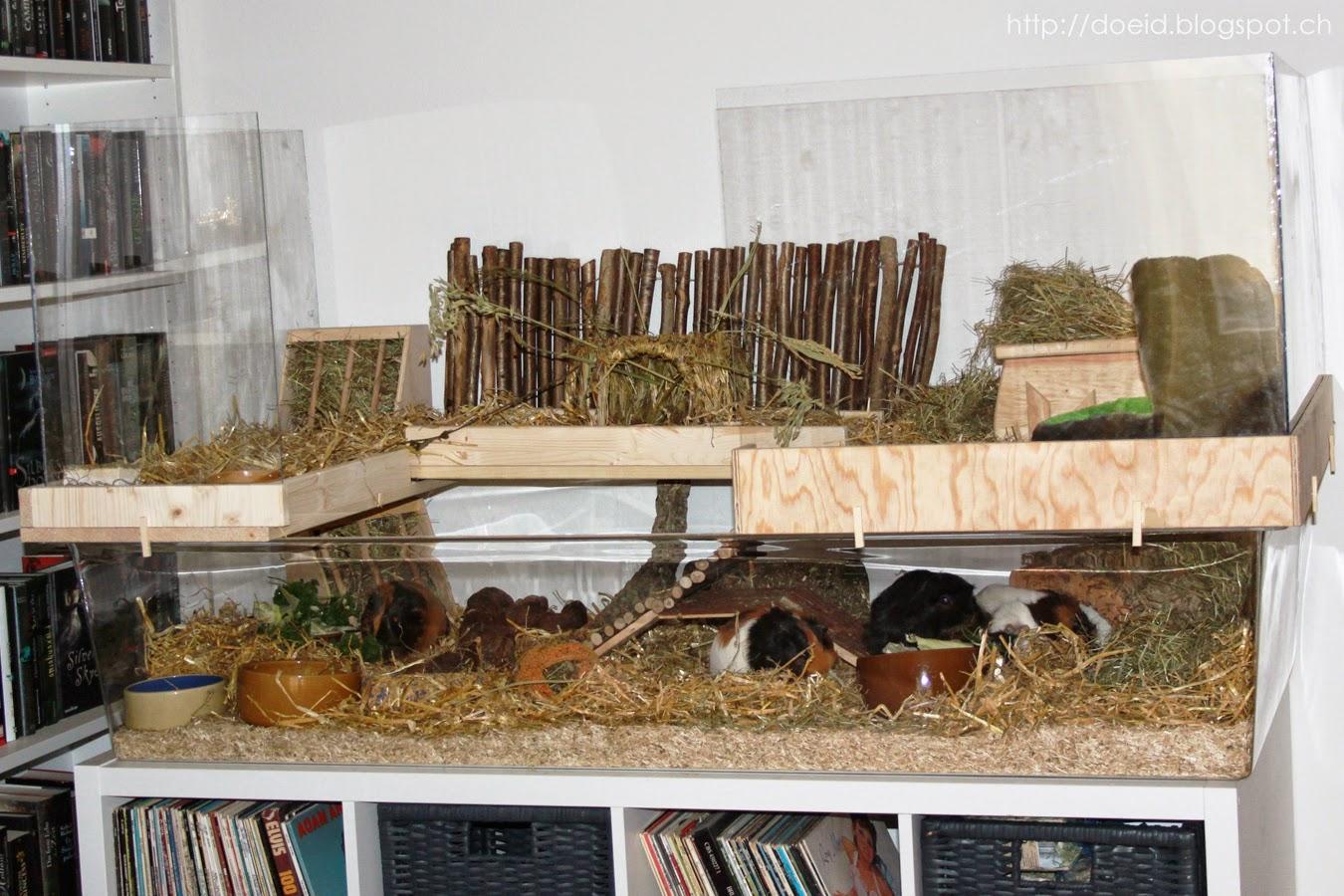 nagerk fig holz meerschweinchen. Black Bedroom Furniture Sets. Home Design Ideas