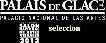 Seleccion Salòn Nacional 2013