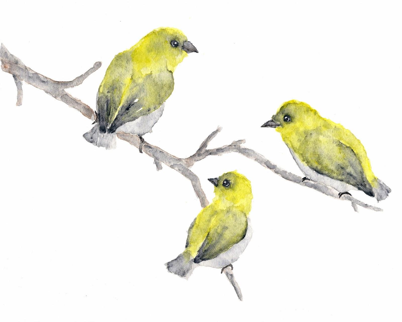Thimble Sparrow: Watercolor bird art - yellow warblers ...