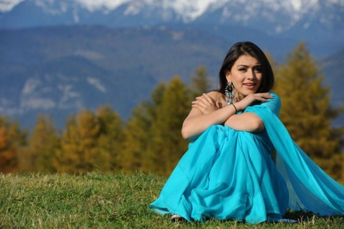hansika motwani saree latest photos