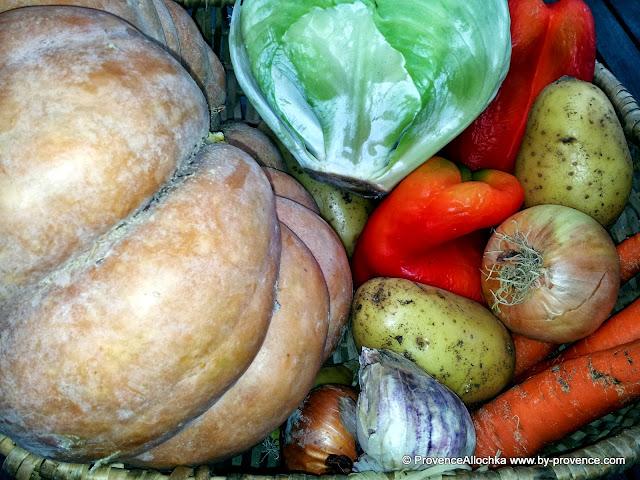 тыква ,капуста,морковь