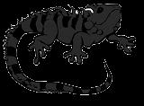 Dark Newt