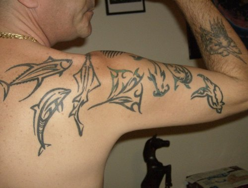 Http://wwwcheckoutmyinkcom/tattoos/zziiggyy1/tribal Sea Creatures
