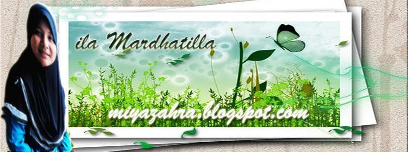 miyazahra.blogspot.com